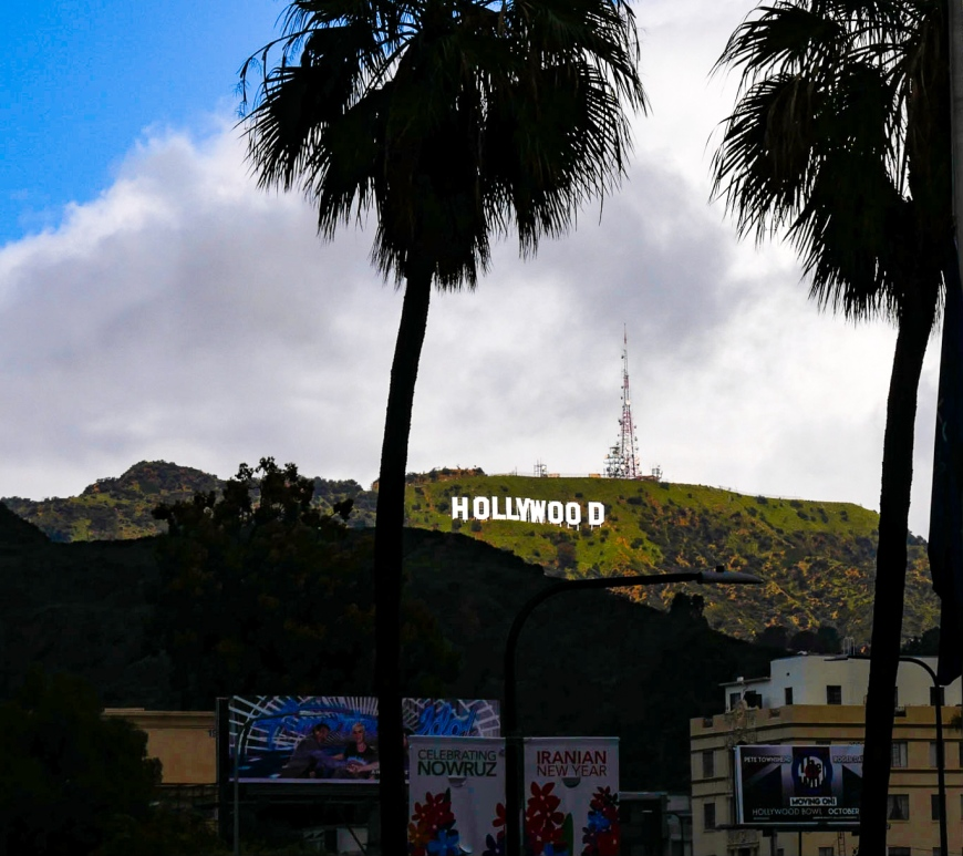 Hollywood sign between palm trees